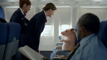 GEICO Mobile App TV Spot, 'When Pigs Fly'