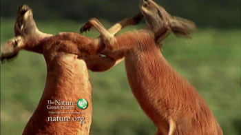 Nature Conservancy TV Spot, 'I'm Yours' Song by Jason Mraz - Thumbnail 4