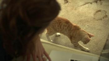 Lumber Liquidators TV Spot, 'Playing Cat' - Thumbnail 2