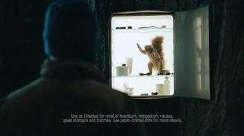 Pepto-Bismol To-Go TV Spot, 'Squirrel' - Thumbnail 8