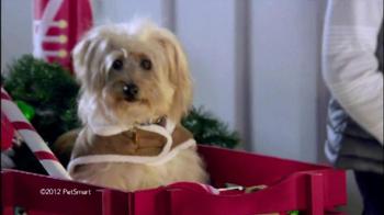 PetSmart Holiday Must-Haves Sale TV Spot, 'PetHoliday' - Thumbnail 4