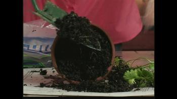 Gourmet Chia Herb Garden TV Spot  - Thumbnail 4