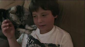 Iams TV Spot, 'Ziggy the Cat' - Thumbnail 2