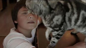 Iams TV Spot, 'Ziggy the Cat' - Thumbnail 3
