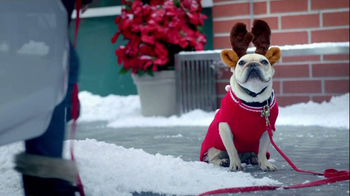 PETCO TV Spot, 'Perfect Gifts' - Thumbnail 4
