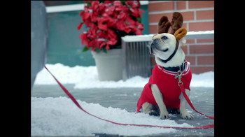 PETCO TV Spot, 'Crazy About Small Pets' - Thumbnail 2
