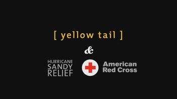 Yellow Tail Chardonnay TV Spot, 'Winter Wonderland' - Thumbnail 10