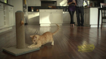 Lumber Liquidators TV Spot, 'Cat' - Thumbnail 8