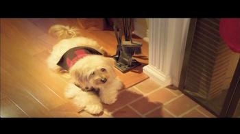 PetSmart Winter Wonderland Sale TV Spot, 'PetHoliday'  - Thumbnail 1