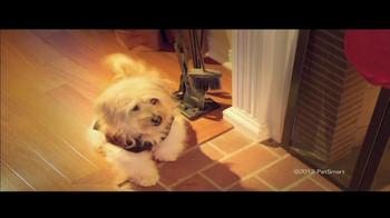 PetSmart Winter Wonderland Sale TV Spot, 'PetHoliday'  - Thumbnail 4