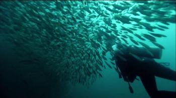 BP TV Spot, 'Visit the Gulf' - Thumbnail 7