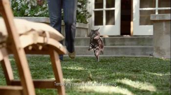Zyrtec D TV Spot 'Dear Cat' - Thumbnail 7