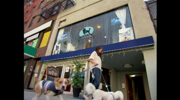 Intuit QuickBooks GoPayment TV Spot, 'New York Dog Nanny' - Thumbnail 1