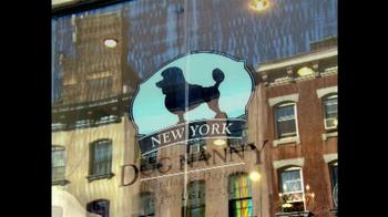Intuit QuickBooks GoPayment TV Spot, 'New York Dog Nanny' - Thumbnail 2