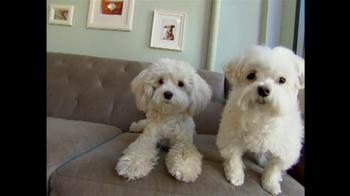 Intuit QuickBooks GoPayment TV Spot, 'New York Dog Nanny' - Thumbnail 4