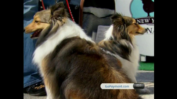 Intuit QuickBooks GoPayment TV Spot, 'New York Dog Nanny' - Thumbnail 8