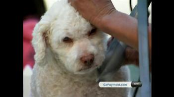 Intuit QuickBooks GoPayment TV Spot, 'New York Dog Nanny' - Thumbnail 9