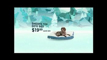 Cabela's Christmas Sale TV Spot, 'Air Rifle' - Thumbnail 6