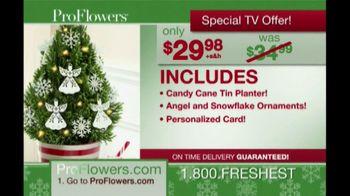 ProFlowers TV Spot, 'Christmas Wish'