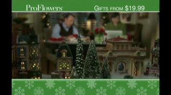 ProFlowers TV Spot, 'Christmas Wish' - Thumbnail 1