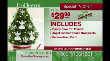 ProFlowers TV Spot, 'Christmas Wish'