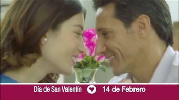 ProFlowers TV Spot, 'Día de San Valentín' [Spanish] - 7 commercial airings