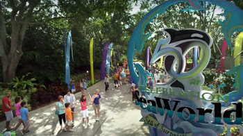 SeaWorld TV Spot, '50th Celebration' - Thumbnail 1