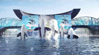 SeaWorld TV Spot, '50th Celebration' - Thumbnail 4
