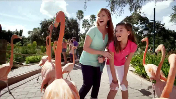 SeaWorld TV Spot, '50th Celebration' - Thumbnail 7