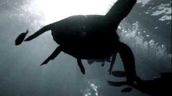 Northern Trust TV Spot, 'Dive In' - Thumbnail 9