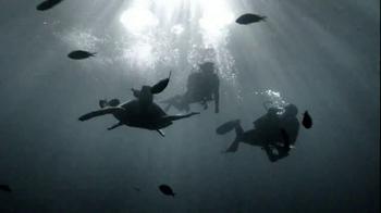 Northern Trust TV Spot, 'Dive In' - Thumbnail 8