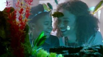PetSmart Amazing Aquatics Event 2014 TV Spot - 84 commercial airings