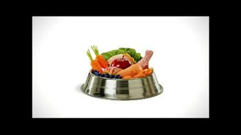 Wellness Pet Food TV Spot, 'All Natural' - Thumbnail 3