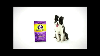 Wellness Pet Food TV Spot, 'All Natural'