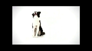 Wellness Pet Food TV Spot, 'All Natural' - Thumbnail 5