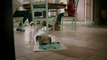 PetSmart Dental Solutions TV Spot - Thumbnail 1