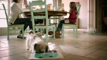 PetSmart Dental Solutions TV Spot - Thumbnail 2