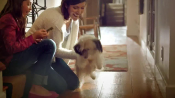 PetSmart Dental Solutions TV Spot - Thumbnail 7