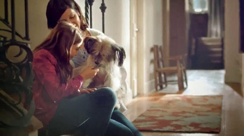 PetSmart Dental Solutions TV Spot - Thumbnail 8
