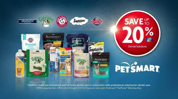 PetSmart Dental Solutions TV Spot - Thumbnail 9