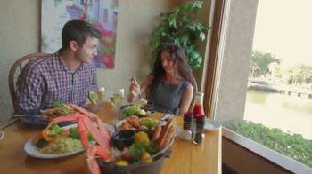 Hilton Head Island TV Spot, 'Fall In'