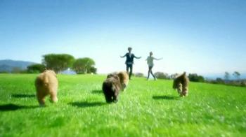 Century 21 TV Spot, 'Puppy Pile' - Thumbnail 5