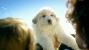 Century 21 TV Spot, 'Puppy Pile' - Thumbnail 8