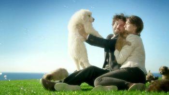 Century 21 TV Spot, 'Puppy Pile'