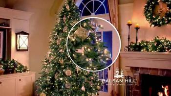 Balsam Hill Christmas TV Spot - Thumbnail 3