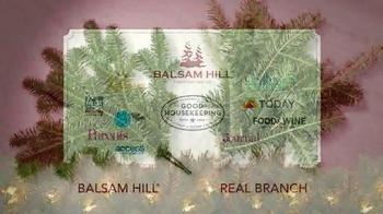 Balsam Hill Christmas TV Spot - Thumbnail 4