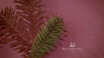 Balsam Hill Christmas TV Spot - Thumbnail 5