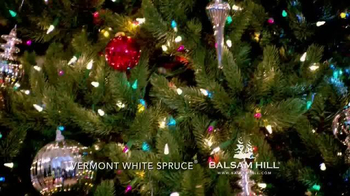 Balsam Hill Christmas TV Spot - Thumbnail 6