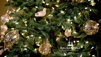 Balsam Hill Christmas TV Spot - Thumbnail 8