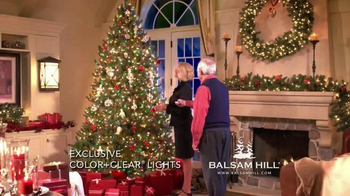 Balsam Hill Christmas TV Spot